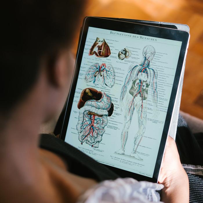 Yoga Anatomy Andrew Dr Yogi