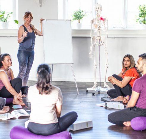 whitespace studio teacher training classroom